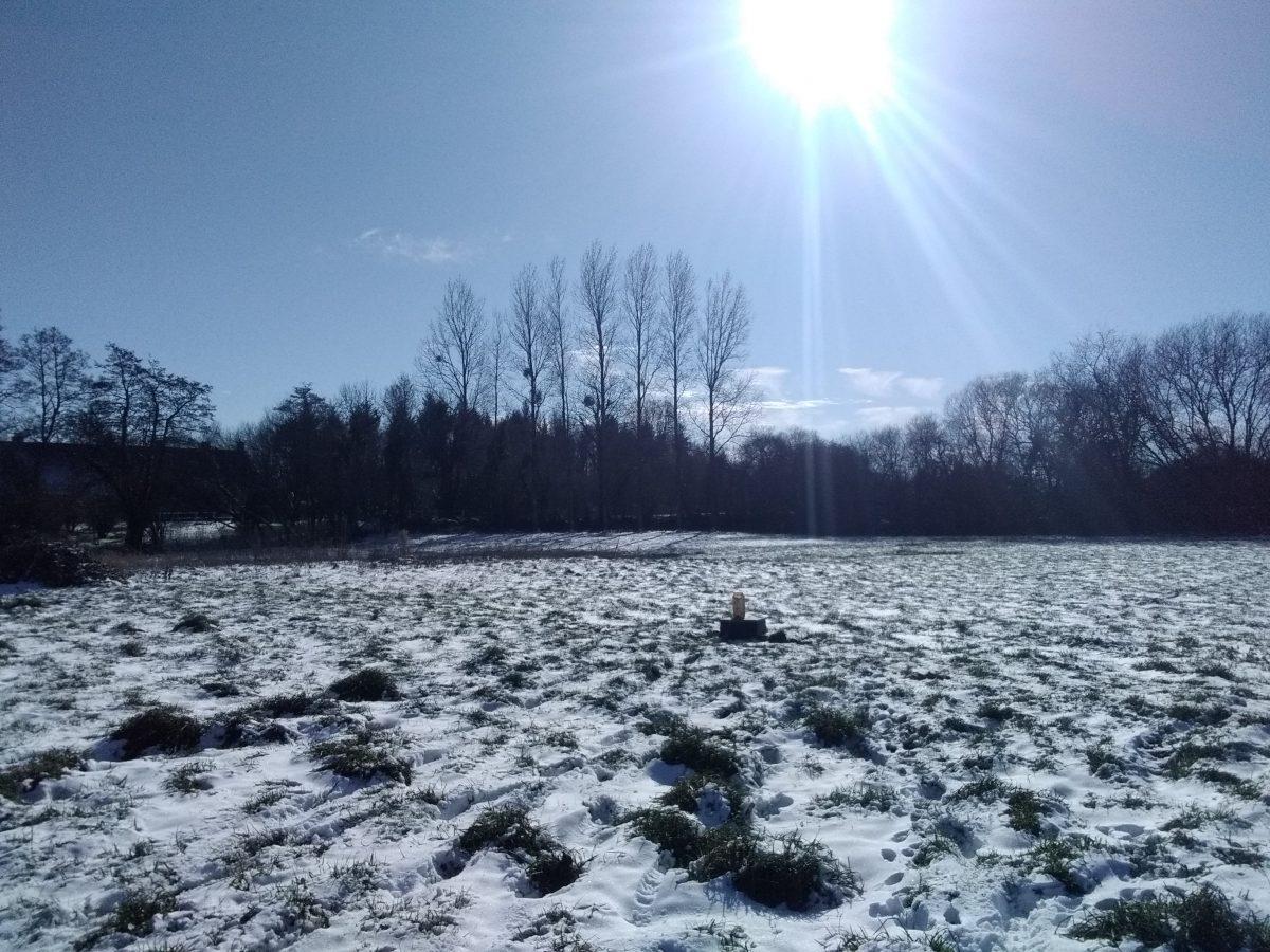 AQUAsoluces, Etude de sol